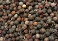 Enciclppedia Cocinista: pimienta