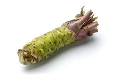 raíz de wasabi