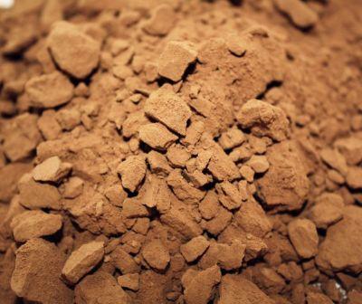 Polvo chocolate